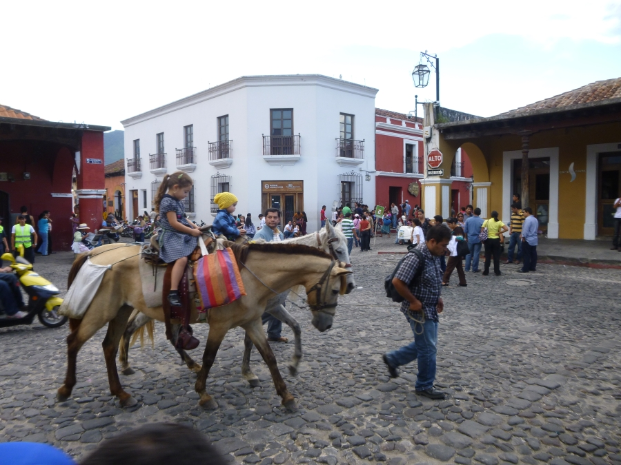 Weekend Pony Rides in Plaza Mayor in Antigua