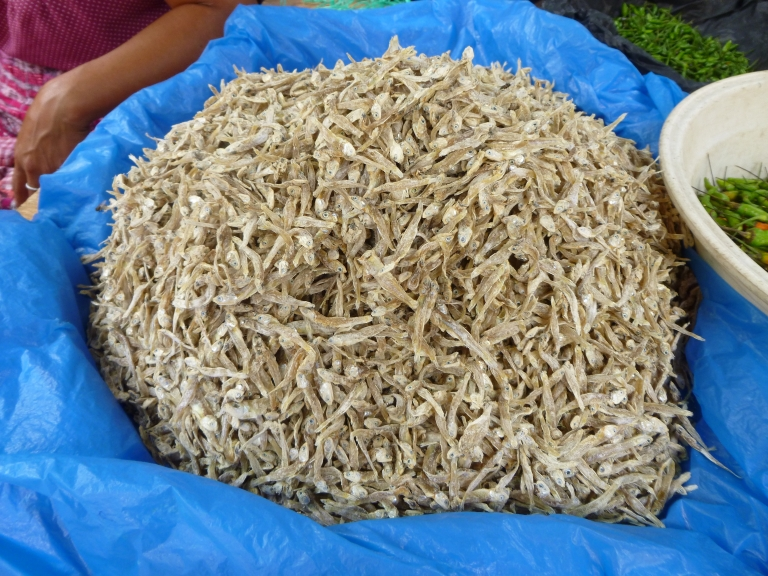 Dried Small Fish (Ikan Bilis as We Know Them In Singapore and Malaysia) in Santiago Market