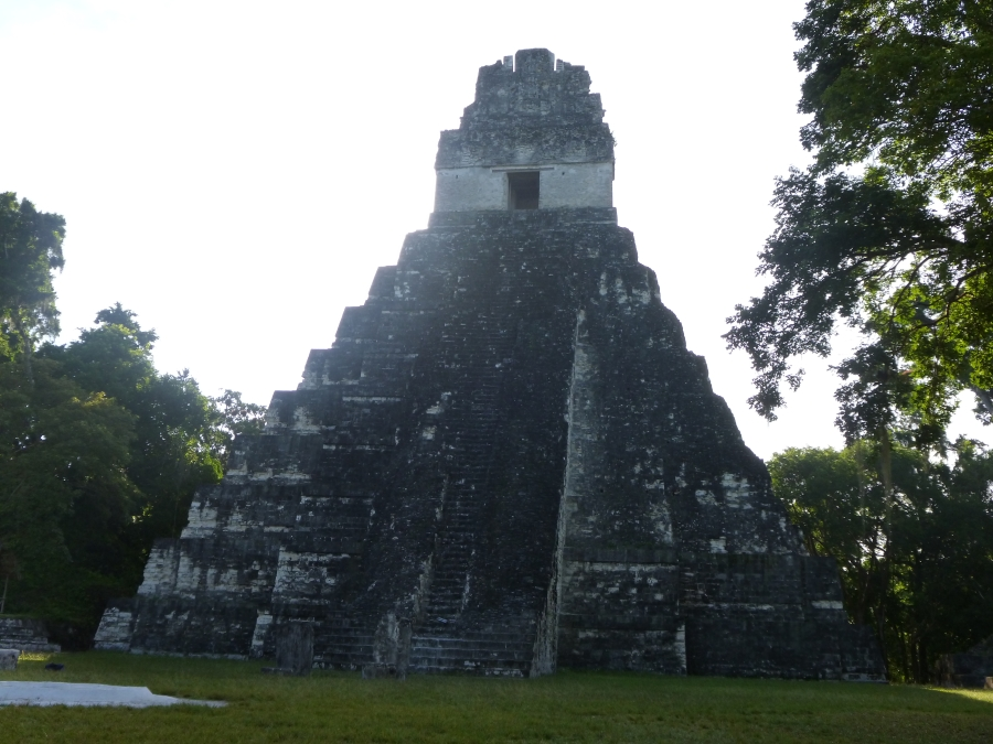 Tikal Temple 1 - Temple of the Great Jaguar - Early Morning