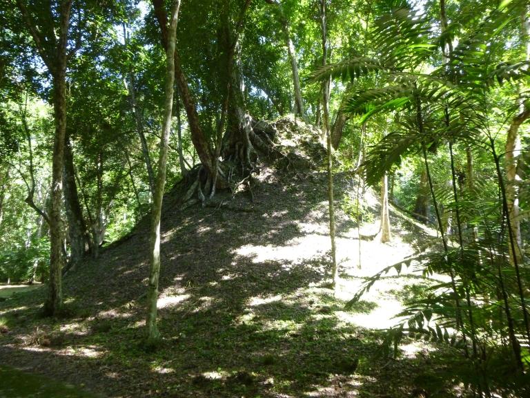 Under This Big Mound Lies An Undiscovered Mayan Structure