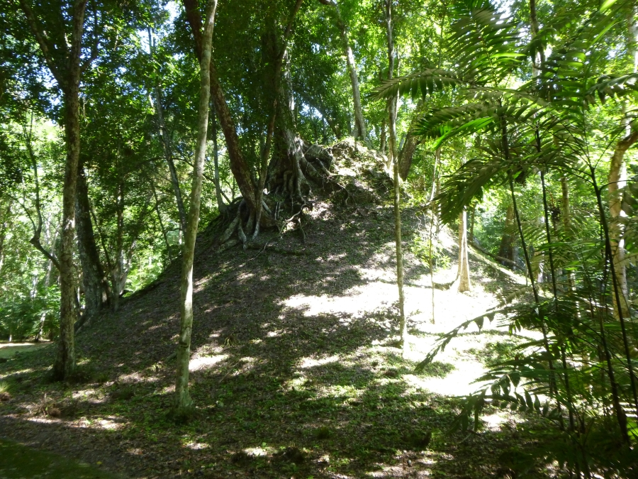 Under This Big Mound Lies An Undiscovered Mayan Structure