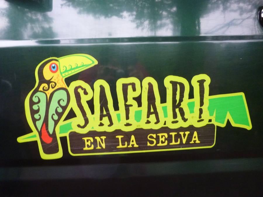 Jungle Safari on Jeep