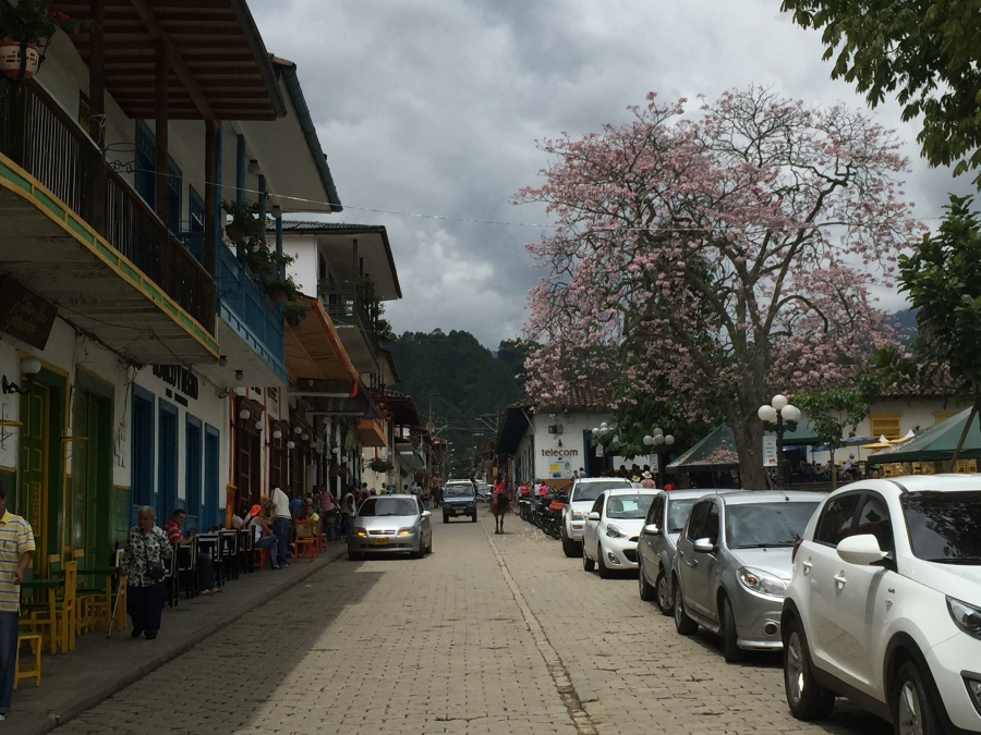 Street Along The Plaza Principal of Jardin