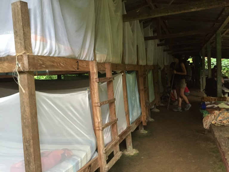Bunk Beds with Mosquito Nets in Aden Camp (Day 1) - Best Camp!