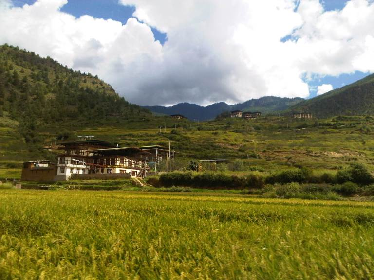 Lush Valley Around Paro