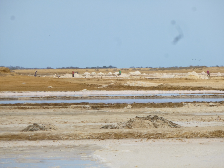 Salt in Manaure, La Guajira