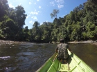 Riding on Iban Long Boat in Temburong